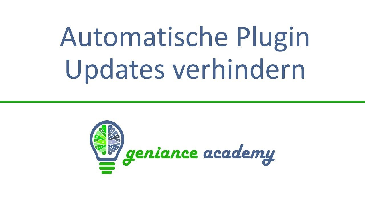 Automatische Plugin Updates in WordPress verhindern