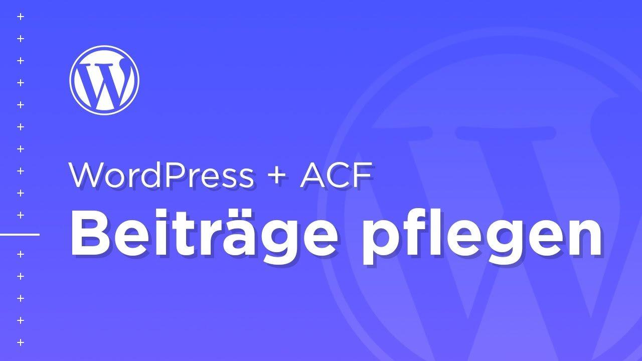 Der beste Weg um Beiträge in WordPress zu pflegen – WordPress ACF Plugin – FineVisuals Custom