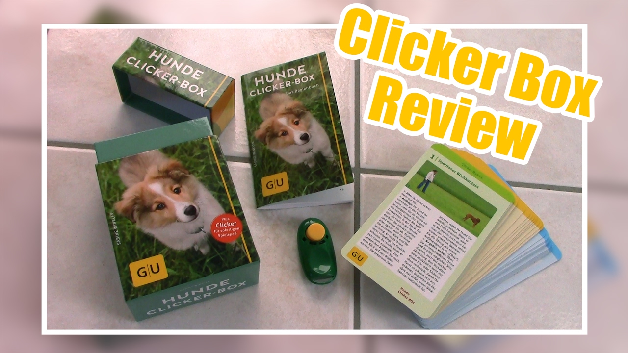 HUNDE CLICKER BOX REVIEW & ERSTE SCHRITTE | Clicker Anfänger