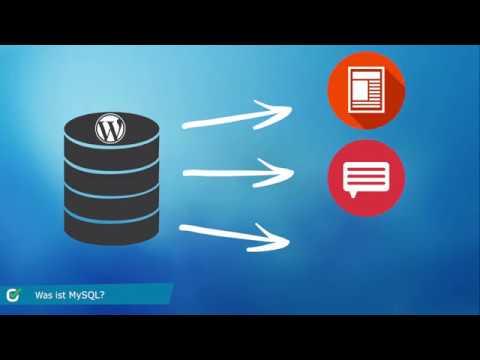 MySQL - Erklärung, Einrichtung & Nutzung