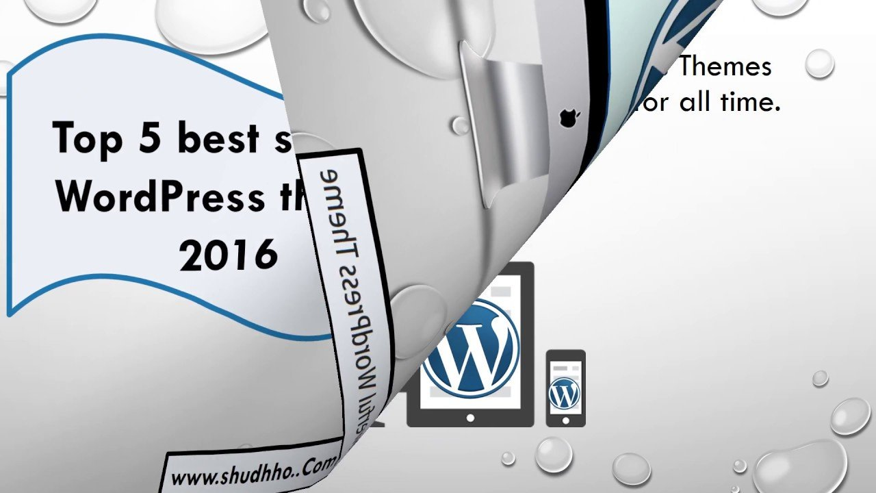 Top 5 Best Selling Wordpress Theme | shudhho.com