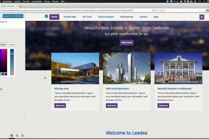 WordPress-Online-Kurs - Leedeo Theme installieren und einrichten