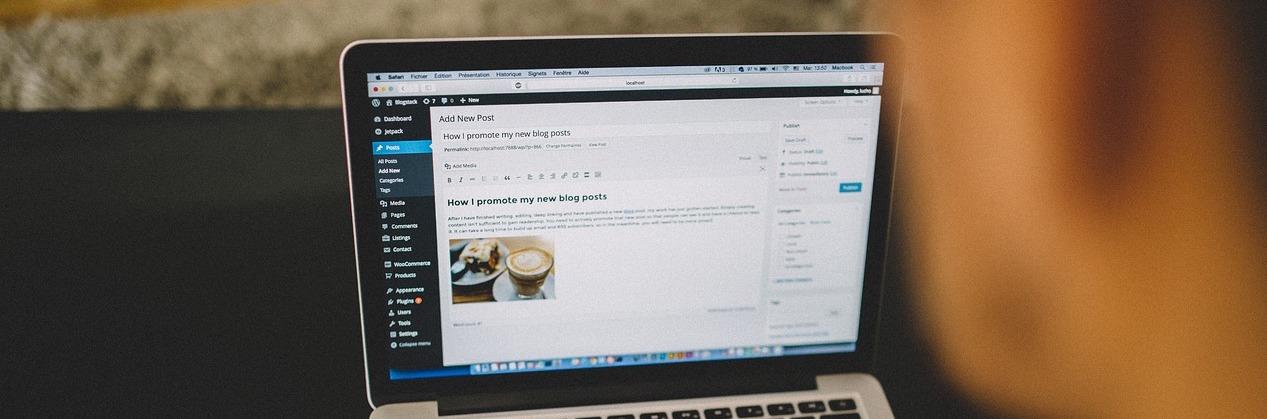 Webseiten mit WordPress bauen in Aaachen