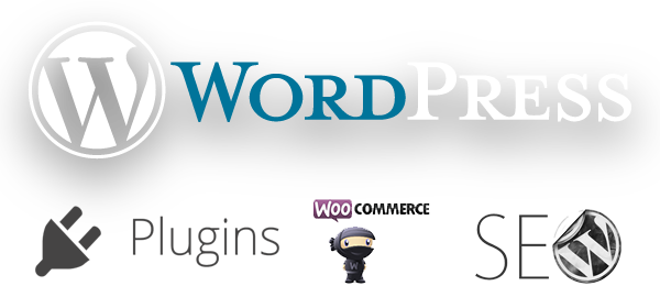 Aachen Wordpress Programierung SEO